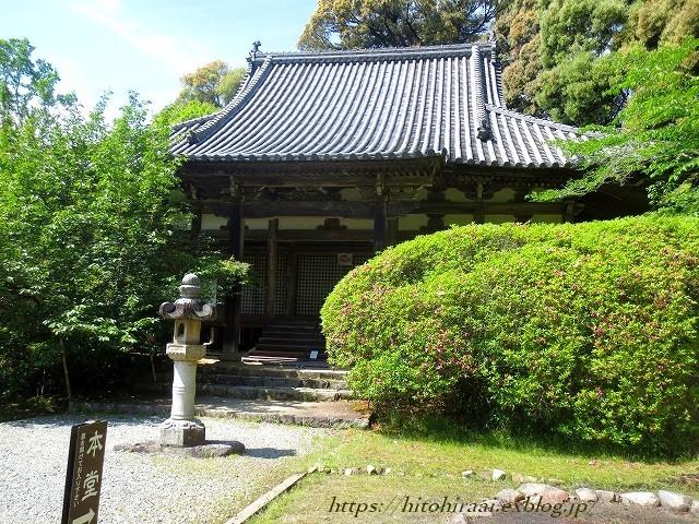 奈良 長岳寺の杜若_f0374092_21372531.jpg