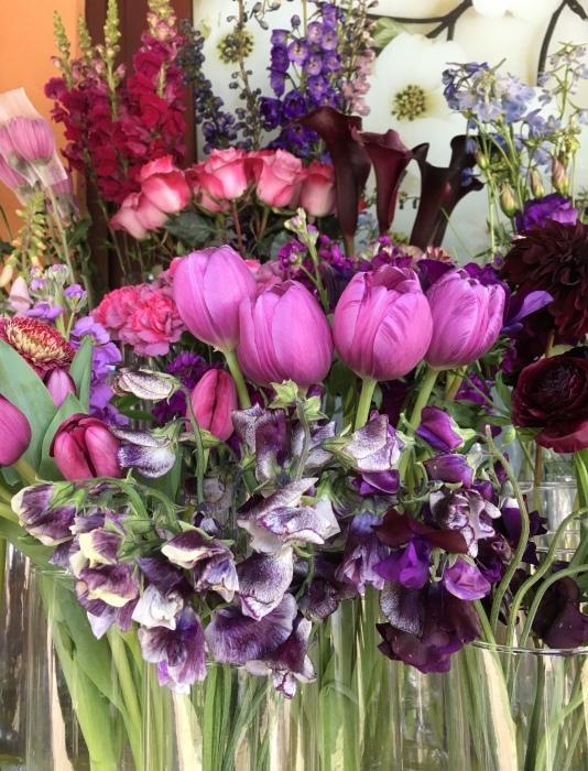 花、花、花、虫、犬、橋、霧/ San Francisco Snapshots_e0310424_15360526.jpeg