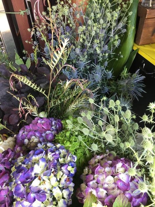 花、花、花、虫、犬、橋、霧/ San Francisco Snapshots_e0310424_15363724.jpeg