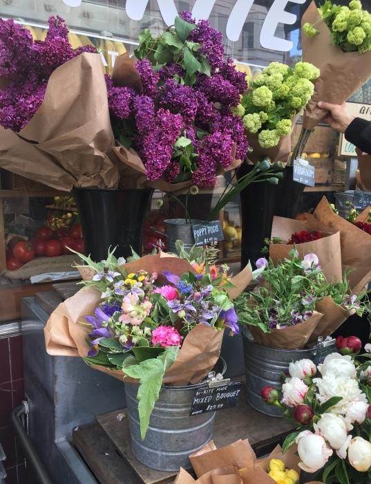 花、花、花、虫、犬、橋、霧/ San Francisco Snapshots_e0310424_15384255.jpeg
