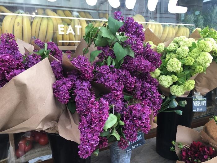 花、花、花、虫、犬、橋、霧/ San Francisco Snapshots_e0310424_15394503.jpeg