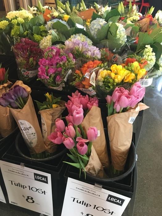 花、花、花、虫、犬、橋、霧/ San Francisco Snapshots_e0310424_15401939.jpeg