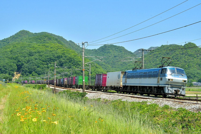山陽貨物列車から_a0251146_23363153.jpg