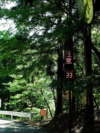 温度計33℃の表示・・・ライン張りと重度の飛蚊症!_d0005250_1931454.jpg