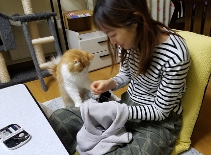 YUKIとヴィヴィアン お裁縫の時間♪_c0151053_17353220.jpg
