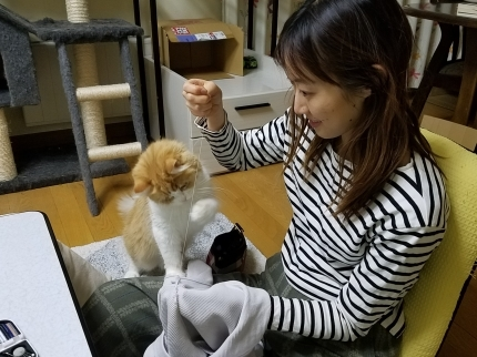 YUKIとヴィヴィアン お裁縫の時間♪_c0151053_17360512.jpg