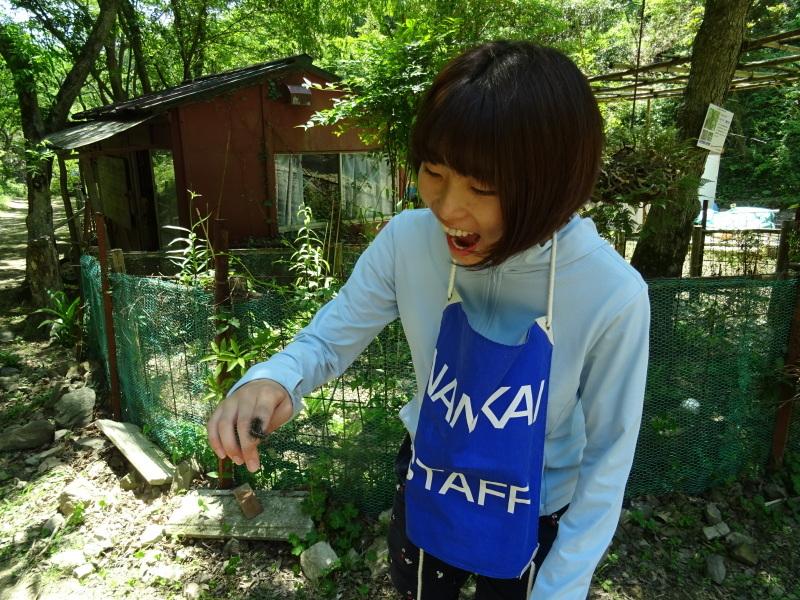『みさき「いきもの」ふれ愛ハイク』(南海ハイキング)・・・孝子の森_c0108460_17022646.jpg