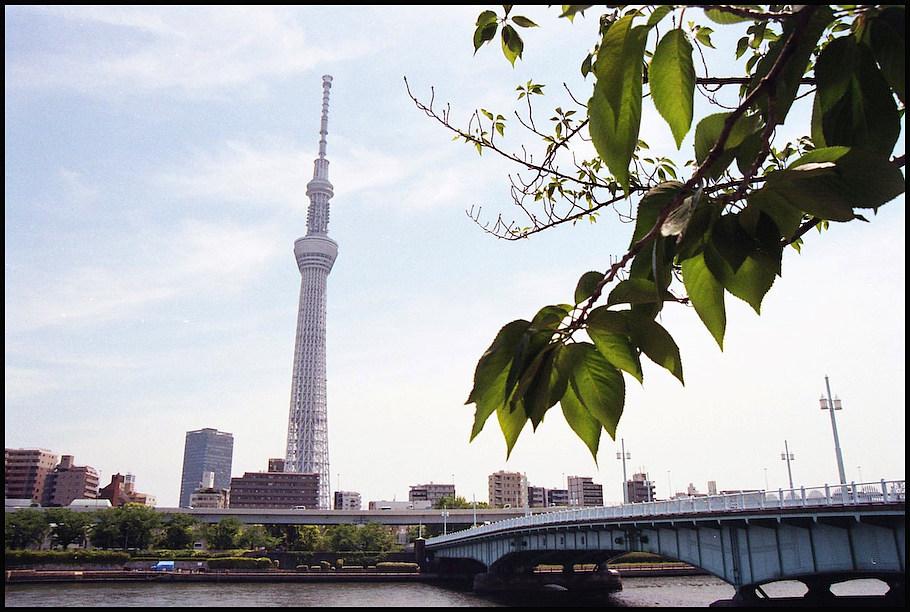 隅田川 -1_b0340572_21140961.jpg