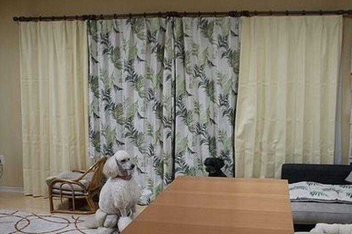夏用のカーテンに替えました。_b0111376_16213934.jpg