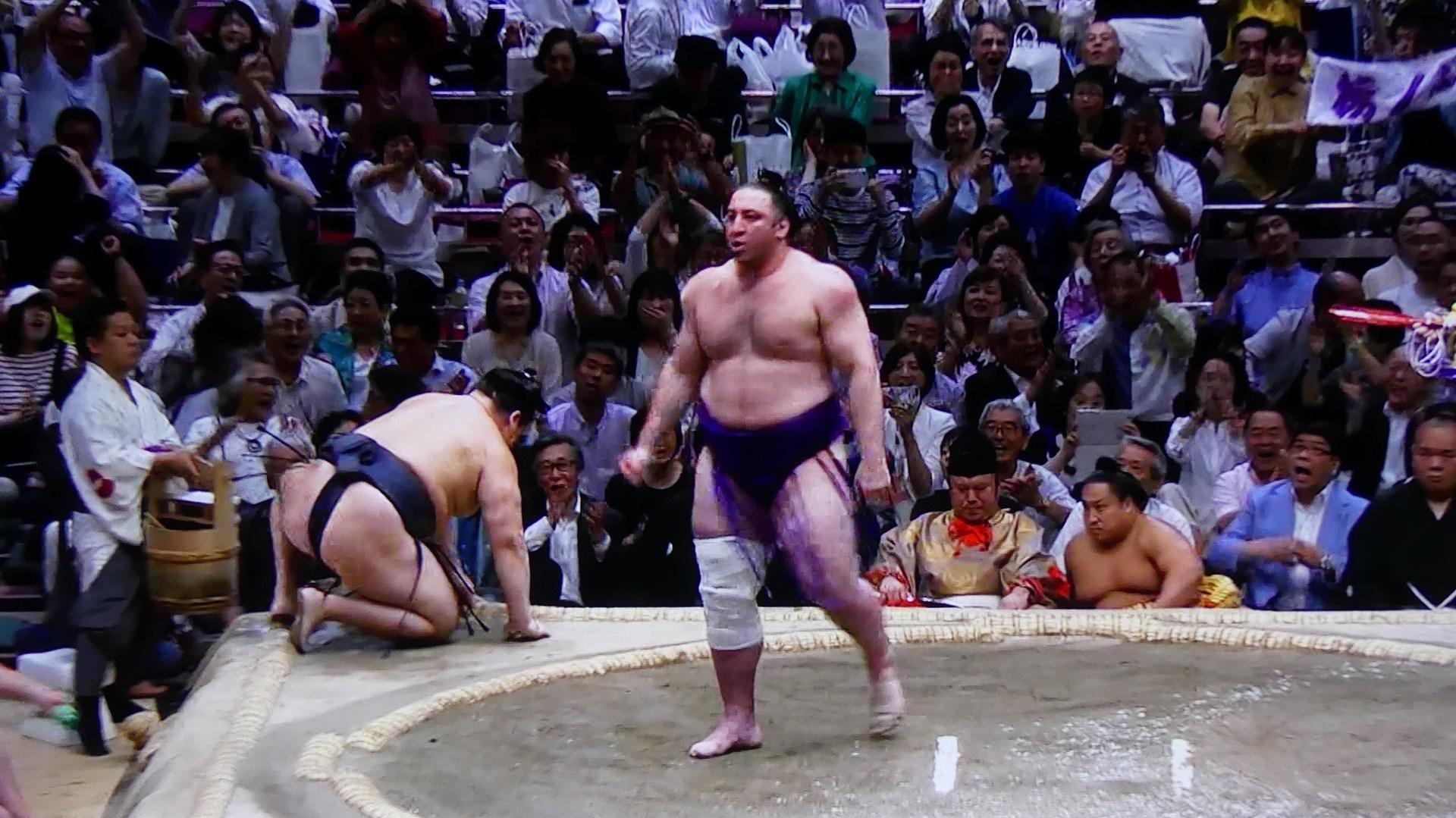 令和最初の大相撲は 朝乃山 が優勝!_a0185081_20073381.jpg