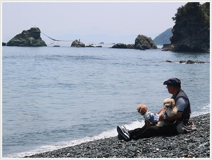 今年もまた、関崎海星館のアサギマダラに会いに出掛けてきました_b0175688_20272500.jpg