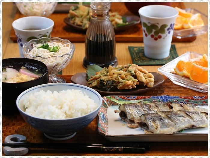 今年もまた、関崎海星館のアサギマダラに会いに出掛けてきました_b0175688_20405024.jpg