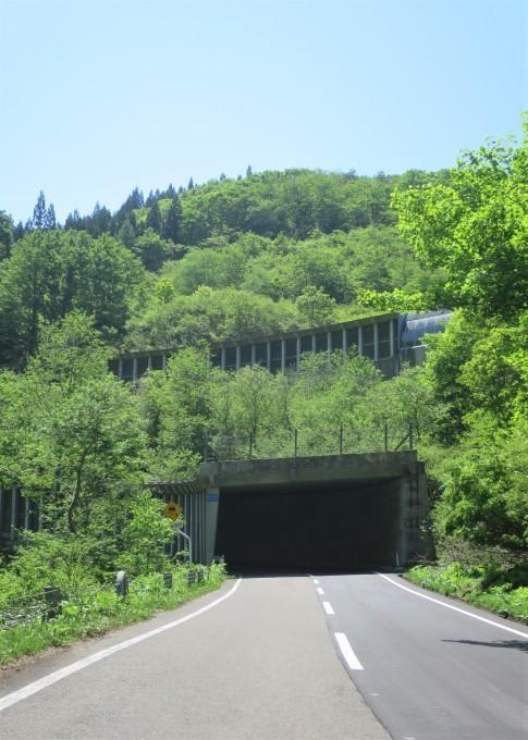 ドライブ日和 🚙~ 「水源の森」辺り_a0214206_01482985.jpg
