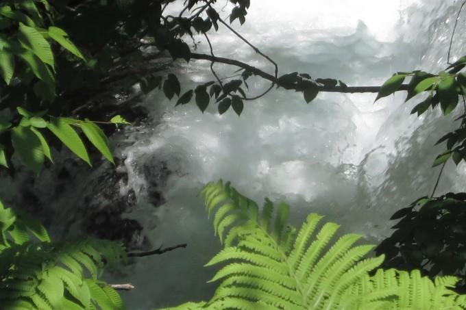 ドライブ日和 🚙~ 「水源の森」辺り_a0214206_01484416.jpg