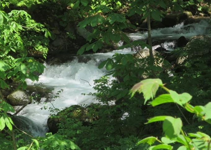 ドライブ日和 🚙~ 「水源の森」辺り_a0214206_01490356.jpg