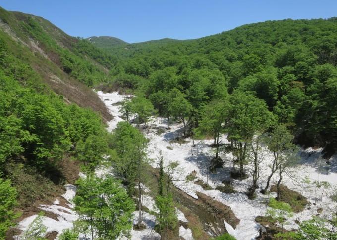 ドライブ日和 🚙~ 「水源の森」辺り_a0214206_01512012.jpg