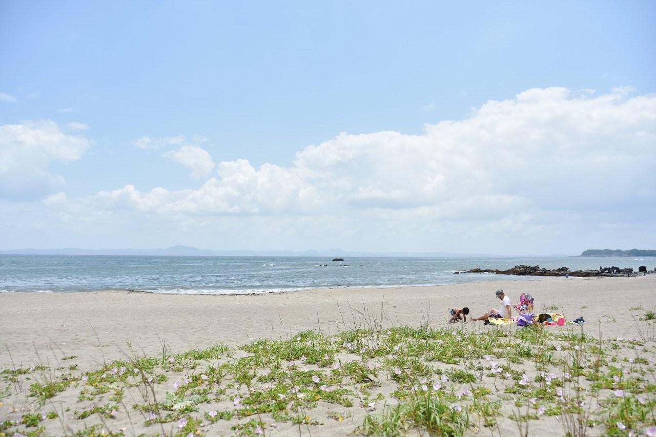 南風吹いて 三浦の浜辺_d0065116_19082416.jpg