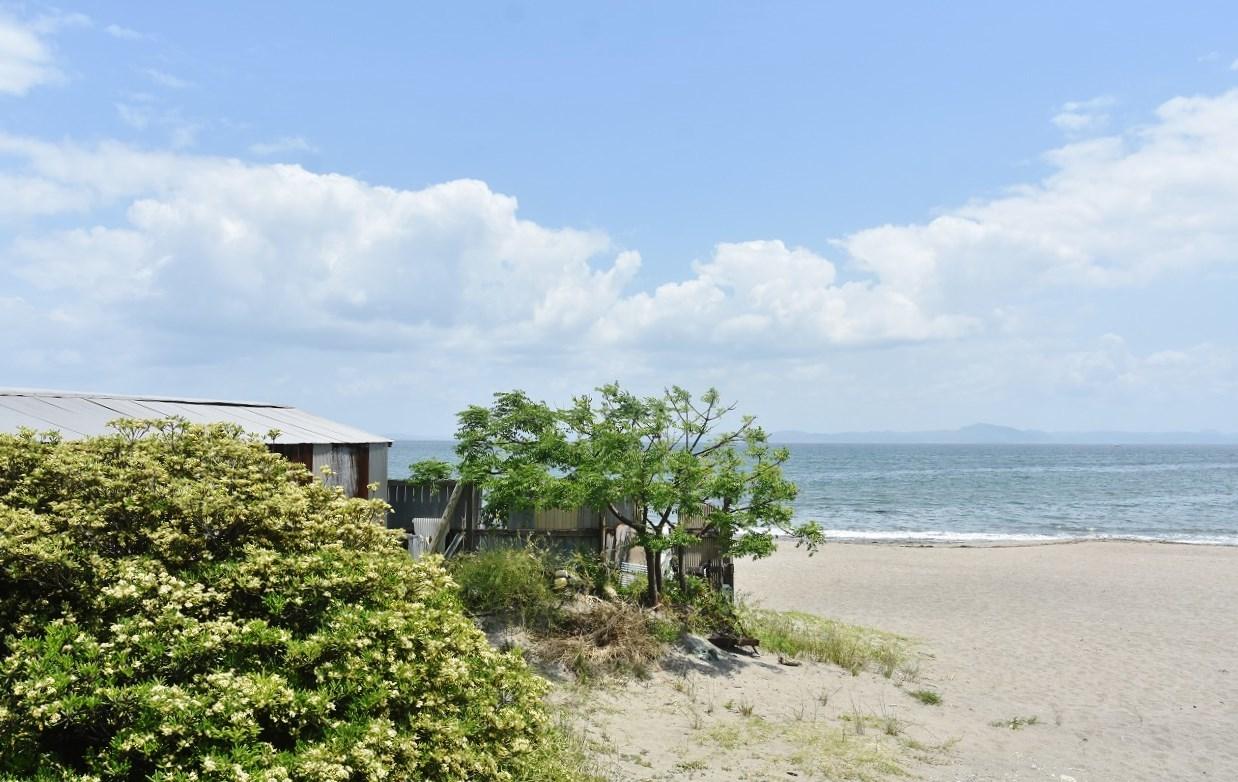 南風吹いて 三浦の浜辺_d0065116_19215418.jpg