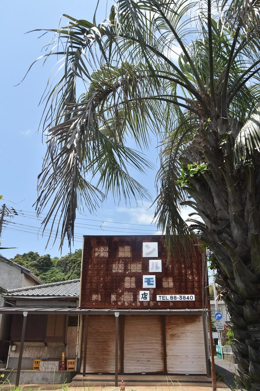 南風吹いて 三浦の浜辺_d0065116_19225529.jpg