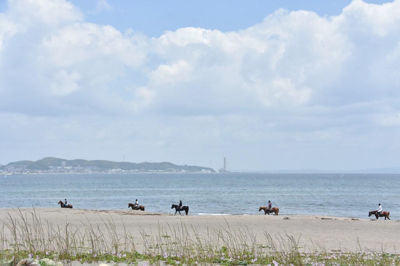南風吹いて 三浦の浜辺_d0065116_19254684.jpg