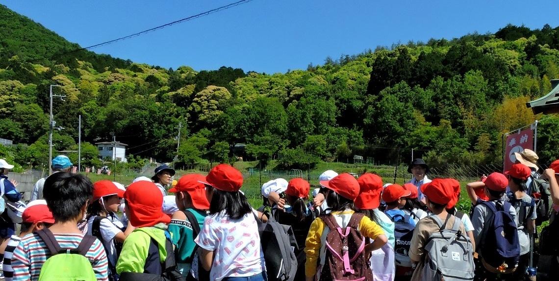 2019年05月23日(臨時 活動報告) 桜が丘小学校「里山体験学習」_d0024426_07240296.jpg