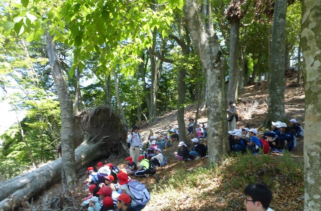 2019年05月23日(臨時 活動報告) 桜が丘小学校「里山体験学習」_d0024426_07451529.jpg