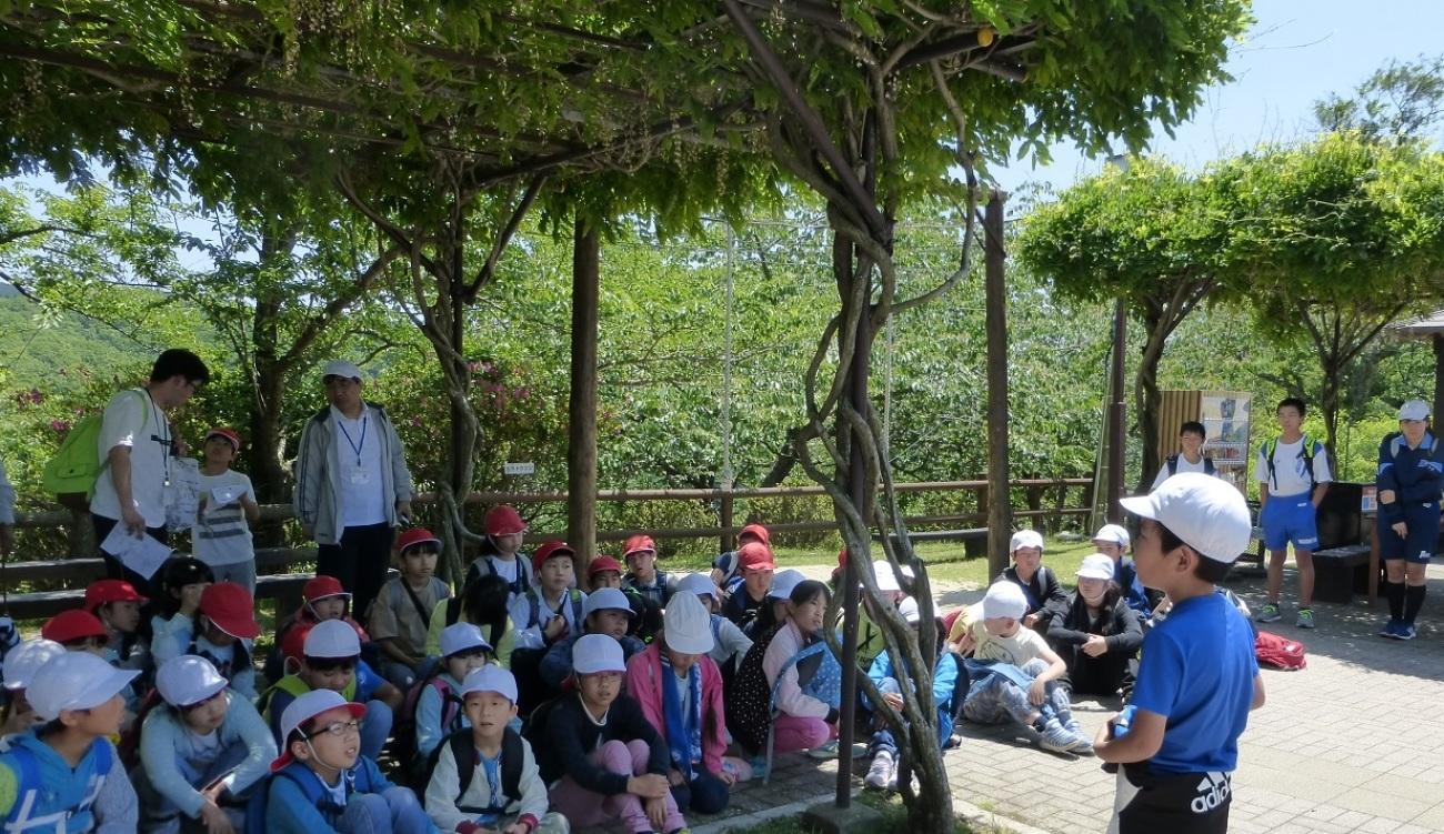 2019年05月23日(臨時 活動報告) 桜が丘小学校「里山体験学習」_d0024426_07452543.jpg