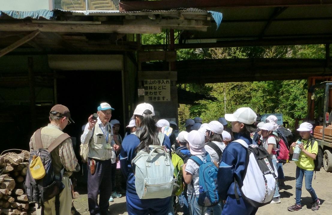 2019年05月23日(臨時 活動報告) 桜が丘小学校「里山体験学習」_d0024426_07461936.jpg