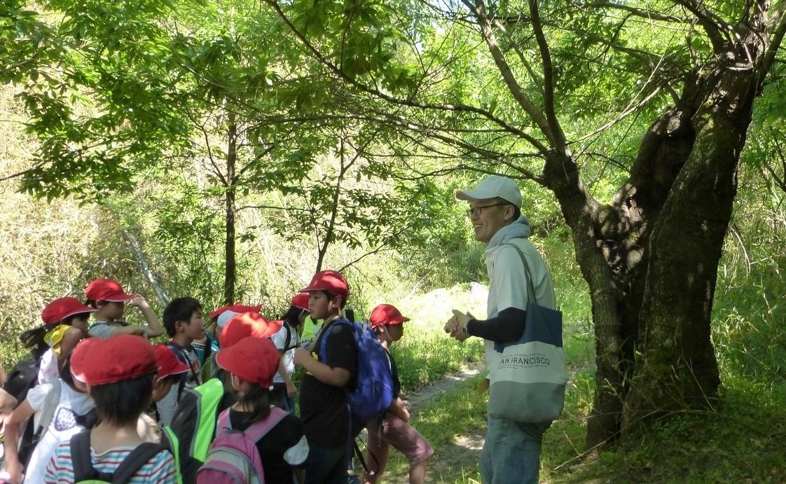2019年05月23日(臨時 活動報告) 桜が丘小学校「里山体験学習」_d0024426_15271286.jpg