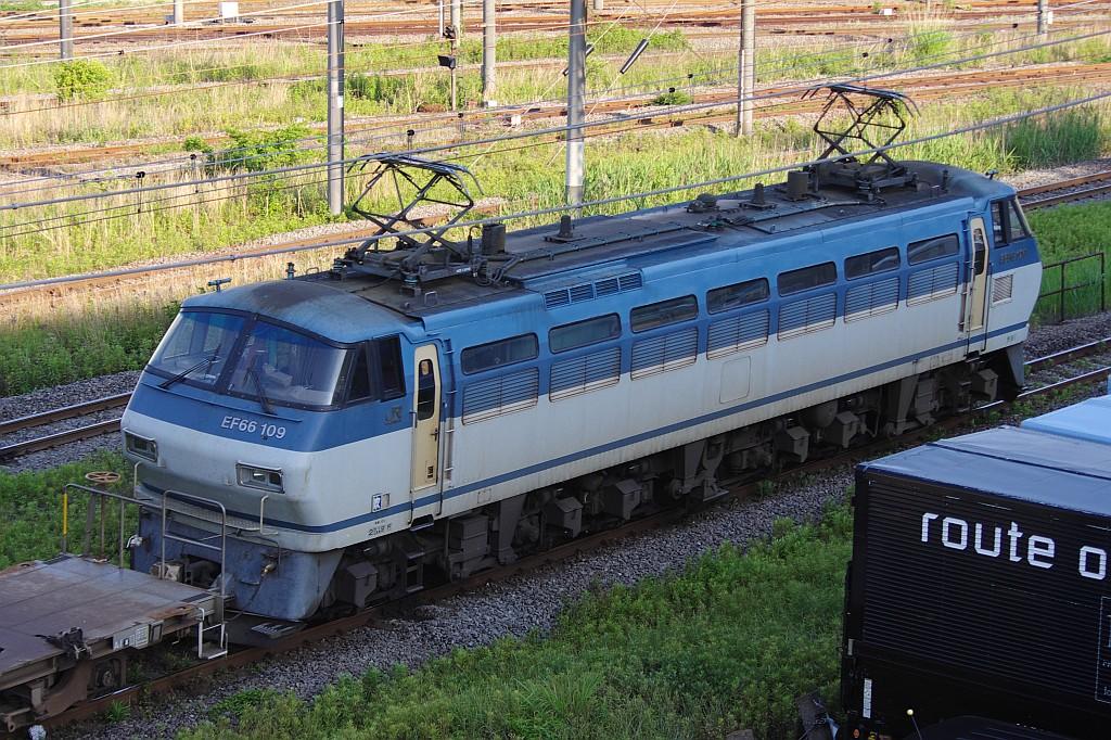 5/25東京貨物ターミナルにてSGS60レのコキとコンテナ_f0203926_23525061.jpg