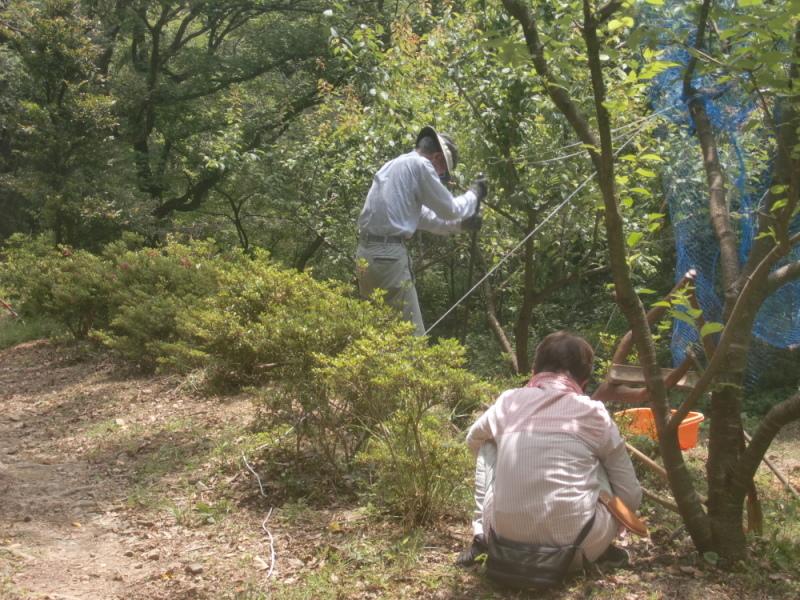 里山ボランティア活動体験会・・・孝子の森_c0239329_21222833.jpg