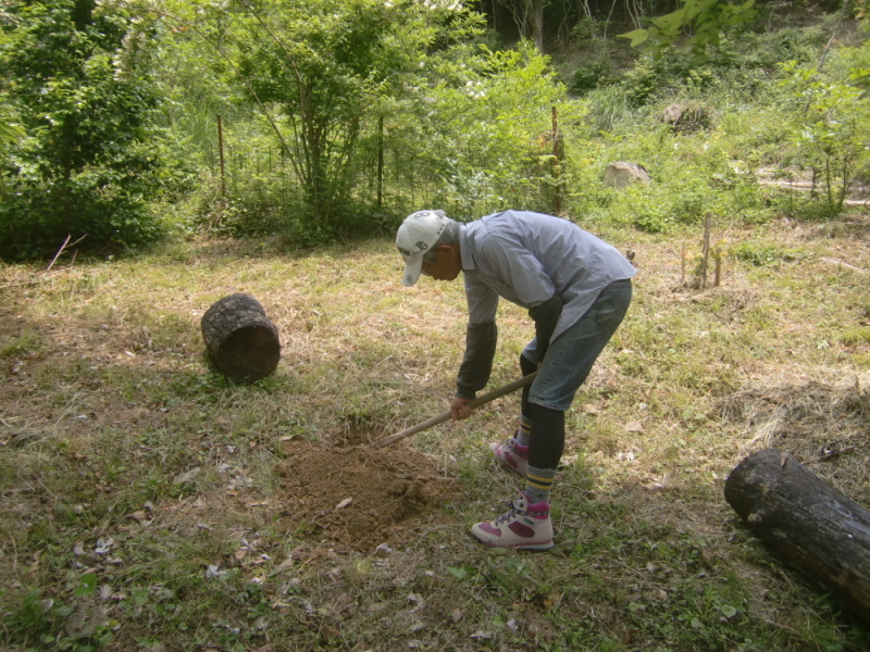 里山ボランティア活動体験会・・・孝子の森_c0239329_21235034.jpg
