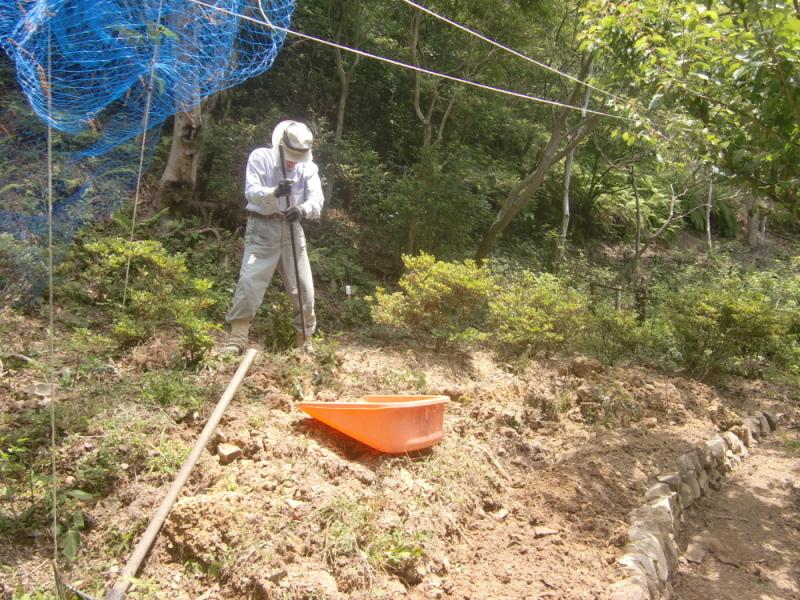 里山ボランティア活動体験会・・・孝子の森_c0239329_21235120.jpg