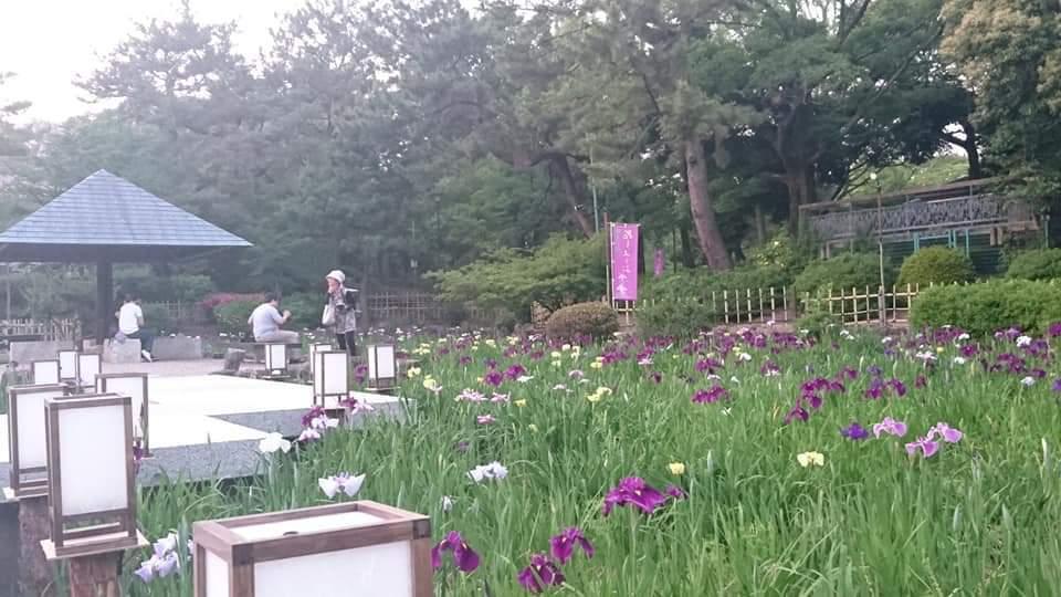 うな富士~鶴舞公園!_f0373339_23023903.jpg