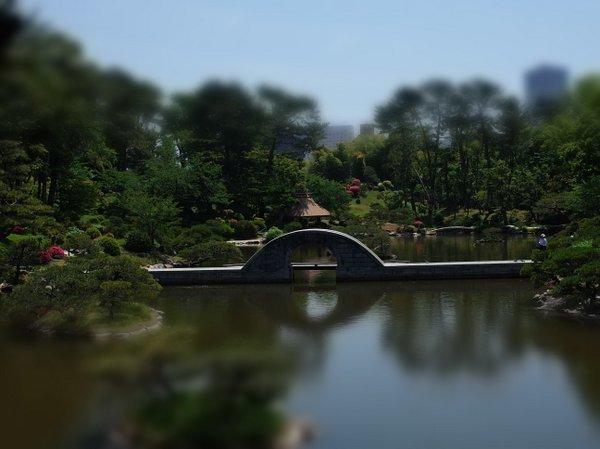5月の縮景園_b0190540_06534096.jpg