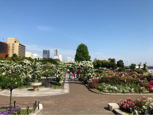 朝の横浜中華街を散歩。_f0207146_16530338.jpg