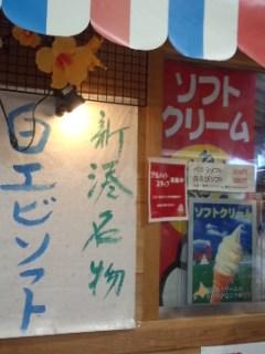 新湊きっときと市場 白エビかきあげ丼と新湊名物白エビソフト_f0112873_320838.jpg