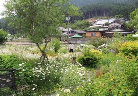 ◆素晴らしい!!・・・多可町のOGへ行ってきました_e0154682_22544661.jpg