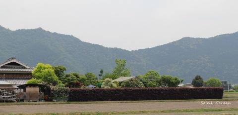 ◆素晴らしい!!・・・多可町のOGへ行ってきました_e0154682_23184536.jpg