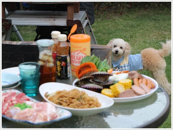 我が家は今週3連休だったようなもので、最終日はお庭で友達とランラン、夕飯はBBQ、さくらも大も充実してたね~_b0175688_20201691.jpg