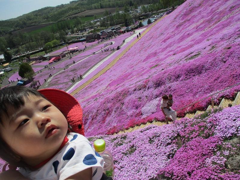 5月26日(日)・・・19日の休業日。東藻琴の芝桜②_f0202703_00575172.jpg