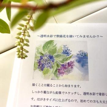 透明水彩で紫陽花を描いてみましょう!_c0138704_9161624.jpg