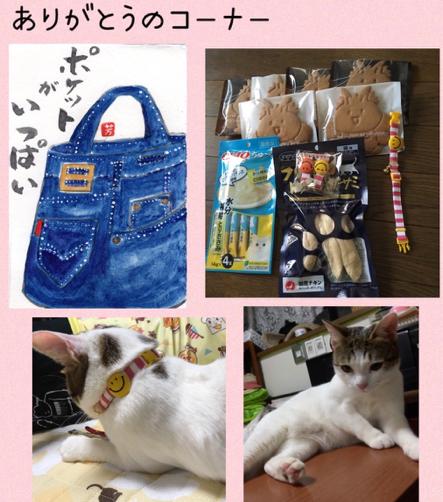 クッキーちゃん_f0375804_09434175.jpg