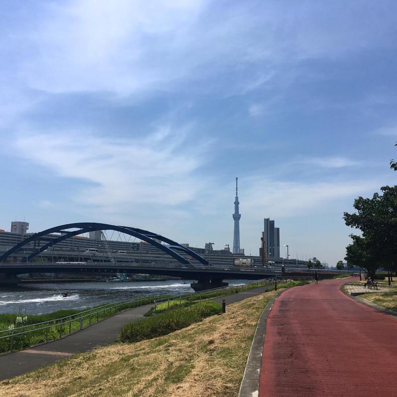 走るべきか、歩くべきか_c0060143_10042572.jpg