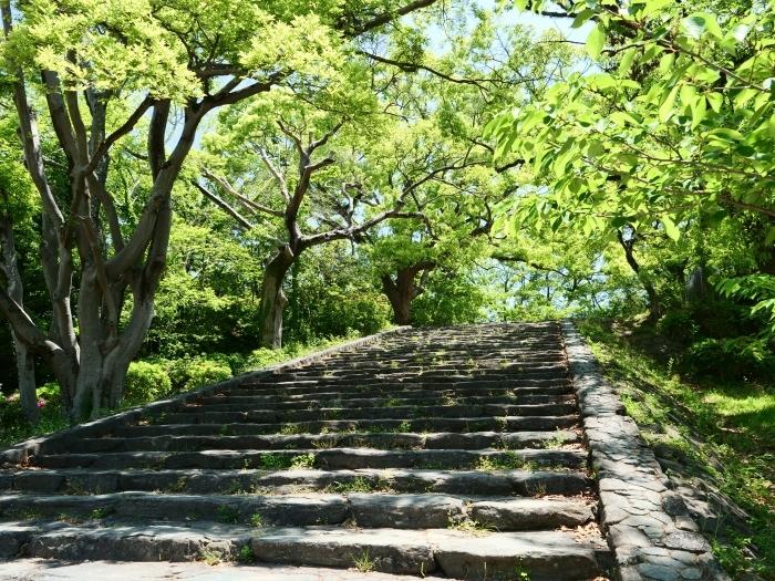 天妃山 (てんぴざん)  2019-05-28 00:00_b0093754_20572210.jpg