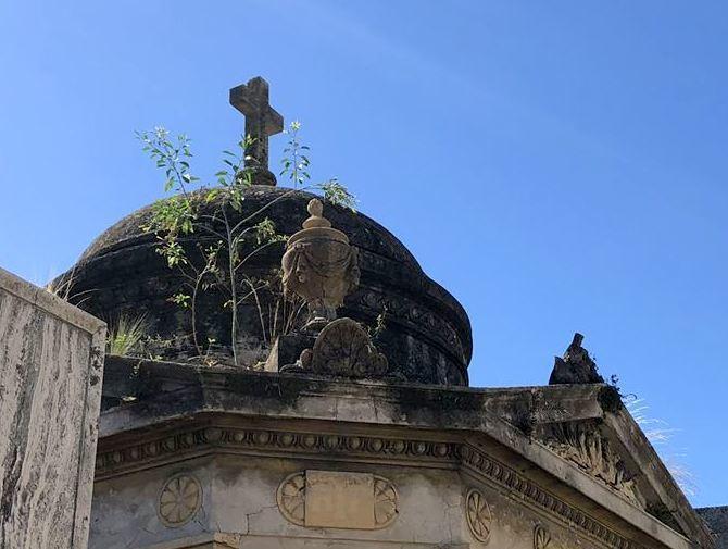 """中南米の旅/45 美しすぎるお墓""""レコレータ墓地""""@ブエノスアイレス_a0092659_23274405.jpg"""