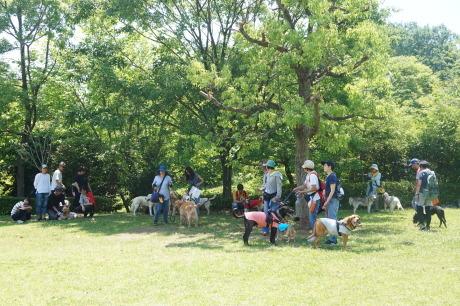 パックウォーク@小山内裏公園★開催しました!!_c0372561_00595065.jpg