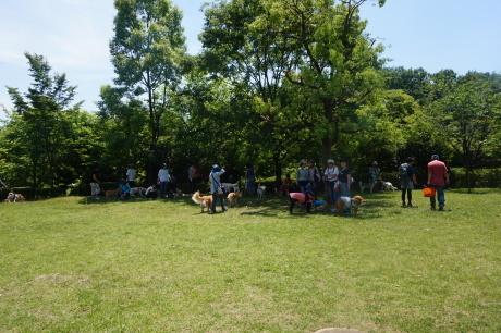 パックウォーク@小山内裏公園★開催しました!!_c0372561_00595965.jpg