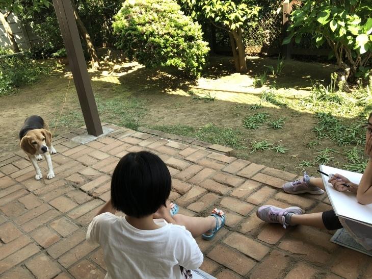 アトリエMIWA〜庭でスケッチ❗️_c0131063_11005291.jpg