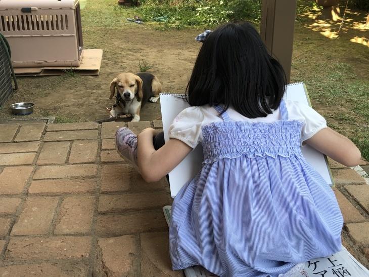 アトリエMIWA〜庭でスケッチ❗️_c0131063_11130967.jpg